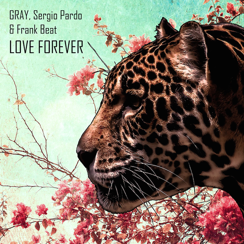 GRAY, Sergio Pardo & Frank Beat - Love Forever (DSB035) - Deep Strips