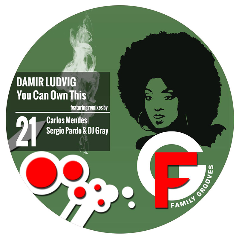 Damir Ludvig - You Can Own This (Sergio Pardo & DJ Gray Remix) (FG021) - Family Grooves