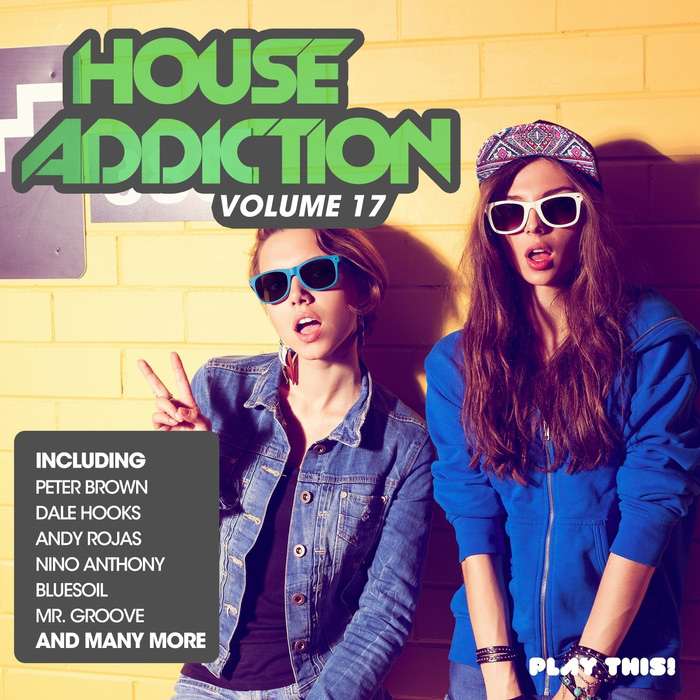 Various Artists - House Addiction, Vol. 17 (PTCOMP397) - Play This! Records