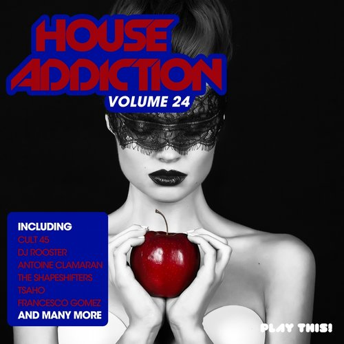 House Addiction, Vol. 24 (PTCOMP536) - Play This! Records